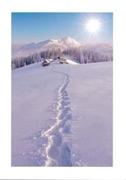 """Bild von Glückwunschkarte """"Spuren im Schnee"""""""