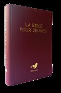 Bild von La Bible pour jeunes, avec DC